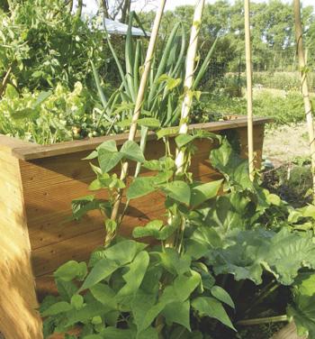 Kuchengarten In Der Kiste Lebensart Im Norden