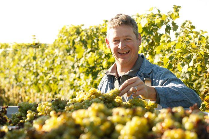 Winzer Ansgar Galler hat sich der nachhaltigsten Form des Bioweinanbaus verschrieben.